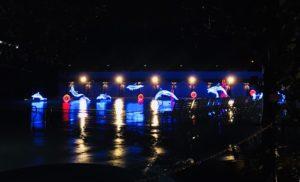 ルネッサンスリゾートオキナワ夜のイルカ